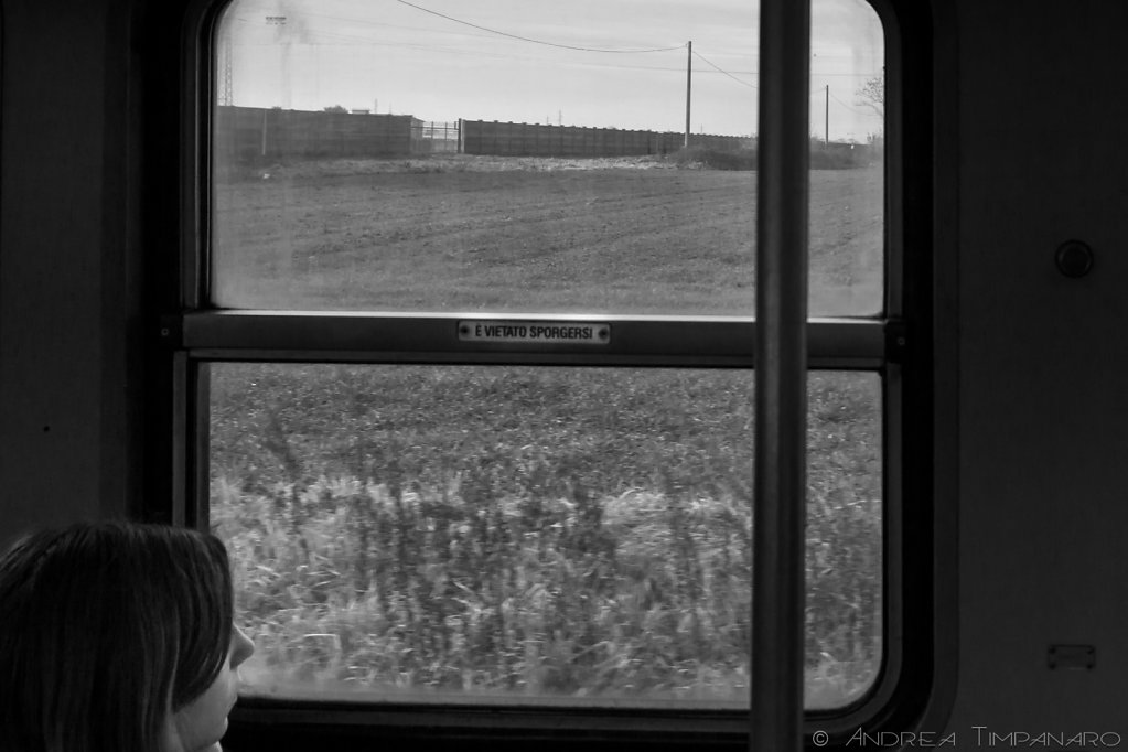 Tram-L-19.jpg